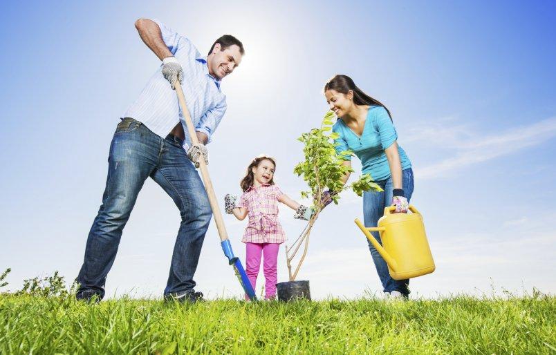 Как научить ребёнка помогать